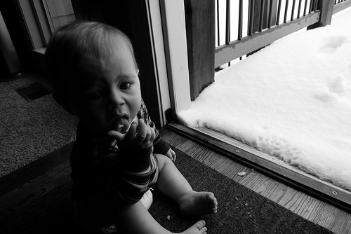 Jack eating snow