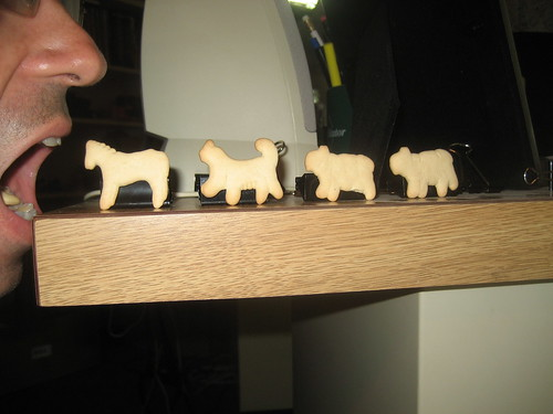 March of the Animal Crackers [365portraits: 198]