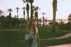 (alexandra hatzakis) Tags: drearydreamyvacationday longhairandshirtdresses massamountsofpalms thedeadofsummer