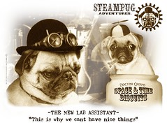 Steampug Adventures: The New Assistant (Grymm Studios) Tags: lab space goggles pug gear science cap laboratory scifi timetravel propeller blackhole steampunk steamgearlab steampug syfy