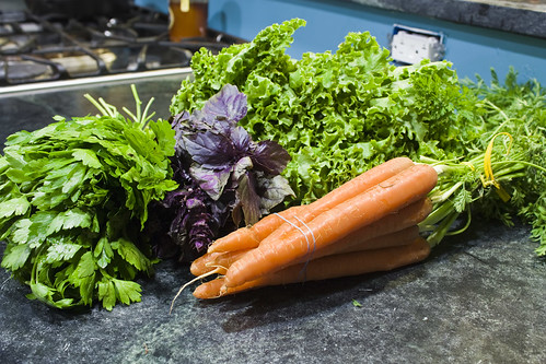 Parsley Basil Carrots Lettuce