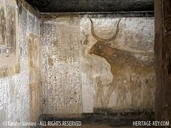 The Celestial Cow on the wall of Seti I's tomb (Sandro Vannini) Tags: wall ancient tomb paintings egypt pharaoh valleyofthekings hieroglyphics egyptians newkingdom 19thdynasty setii bookofgates rehorakhty heritagekey sandrovannini giovannibattistabelzoni heritagesite1222 morningsungod firstpillaredhall