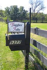 Tuggle'sFollySept2009 - 02