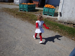 Running Towards The Pumpkins