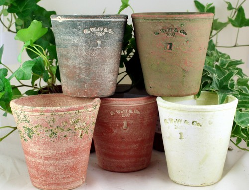 Small Guy Wolff pots