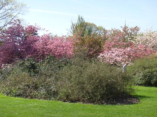 Detalle de Kew Gardens