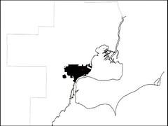 spatial Detroit, circa 1900 (by: Charles Waldheim, Harvard GSD, CNU 19)