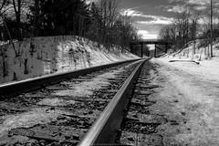Winter railroad III (Greg Stanhope) Tags: wood old winter blackandwhite bw ontario canada nature train landscape landscapes wooden spring nikon moody snowy traintracks trains rails blacknwhite d5200 blinkagain nikond5200 125203141999