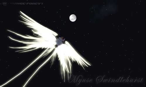 Angel of moonlight night