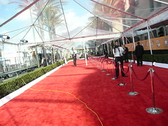 Red Carpet Action