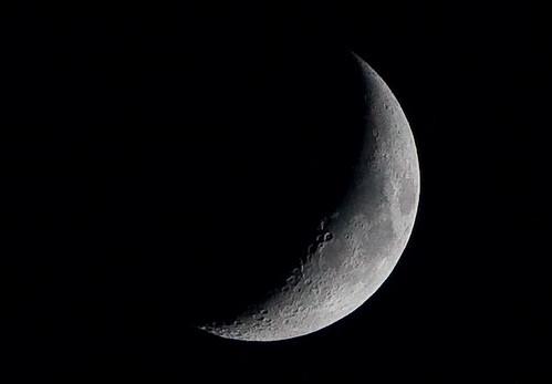 current_moon 20090131