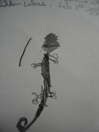 Jack's nature jounal-salamander
