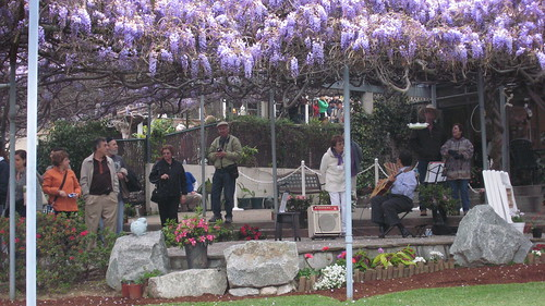Visitors Take in The Sierra Madre Wisteria