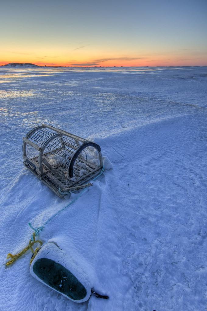 Cage sur la baie