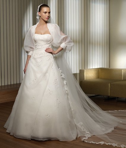3389266491 c9a20b10bf Most Beautiful Wedding Dresses