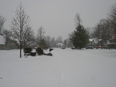 P1110841 (masamunecyrus) Tags: snow indianapolis indiana winterstorm