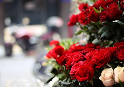 bikes'n'roses