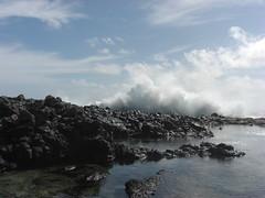 Tidal pools at the bottom of Makapu'u (Ramona Mayhem) Tags: hawaii oahu waimanalo