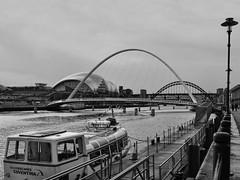 Gateshead Millennium Bridge (Leo Reynolds) Tags: bridge bw photoshop canon eos iso100 f80 17mm 0008sec 40d hpexif leol30random groupbw threadtwtme threadtwtme2mon groupblackwhite groupsepiabw groupblackwhitepics xleol30x xratio4x3x xxx2009xxx