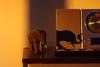 Pollution sunrise (bOw_phOto) Tags: morning summer elephant yellow sunrise 50mm morninglight glow shadows purple pentax pollution dslr fa50mmf14 smcpfa50mmf14 k200d justpentax