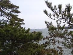 (8) (Kuruman) Tags: travel matsushima miyagi