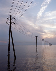 Utility poles on the sea (cocoip) Tags: ocean sea film beach mediumformat utilitypole   portra160vc pentax67ii   gtx970  smcp200mm 160vc