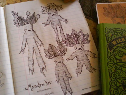 family of mandrakes