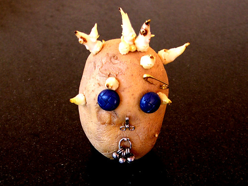 If we can have couch potato, then why not punk potato