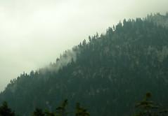 Peaks life ... (antifa) Tags: mountain trekking wonderful view greece parnassos mountainrange παρνασσοσ viewautumngreecegreece mountainsfirsfogmistmisty scenenaturegreek mountainscentral