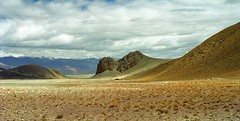 The Company (reurinkjan) Tags: 2002 yak nature nikon tibet everest dri tingri jomolangma tibetanlandscape lammala janreurink norrdzi བོད། བོད་ལྗོངས།