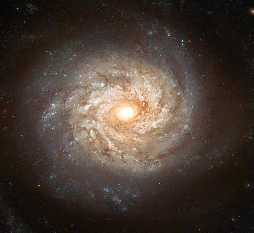 NGC3982_Hubble