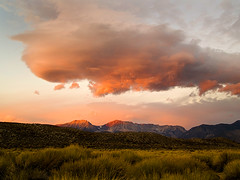 East side storm clouds above rabbitbrush (MistyDays / CB) Tags: california pink winter sunset wild usa storm mountains nature grass clouds america landscape natural stormy olympus hills snowcapped peaks monolake sierranevada plain goldenhour rabbitbrush sierranevadamountains easternsierra approachingstorm impending e500 monocounty charleneburge anawesomeshot prstolen exploreisodd easternscarp highestposition41onthursdayjanuary152009 highestposition34onthursdayjanuary152009 highestposition90onwednesdayjanuary142009 currently58 charlenemburge
