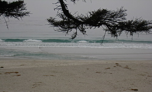 Misty day, Carmel beach