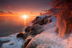 Fire and Icicles (joelerskates) Tags: winter sky sun lake snow ontario canada ice water burlington sunrise canon landscape icicle 5d lakeontario oakville alemdagqualityonlyclub joelerskates localsknow