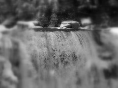 S5002770 (Force Majeure Studios) Tags: park county sky mountain black mountains west art nature water river photography virginia state acid fine canyon falls lodge valley waters gorge davis tucker blackwater allegheny canaan the darkened in tannic jameswbailey