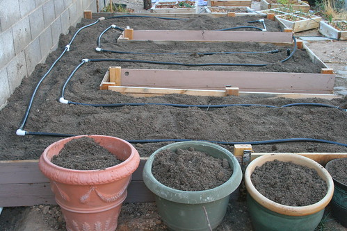 Large Raised Bed for Tomatoes