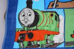 P1280010 (sandrasphotoexchange) Tags: towels kidsthemedblankets