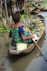 ananas shop in Ganvi (luca.gargano) Tags: voyage africa travel girl boat paddle tribal benin ananas ganvie gargano ganvi lucagargano