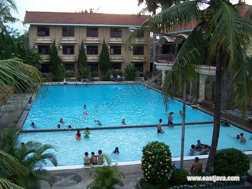 Palm Hotel Swimming Pool - Bondowoso - East Java
