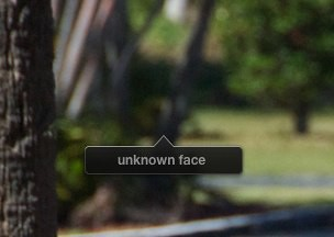 iPhoto - Face Fail
