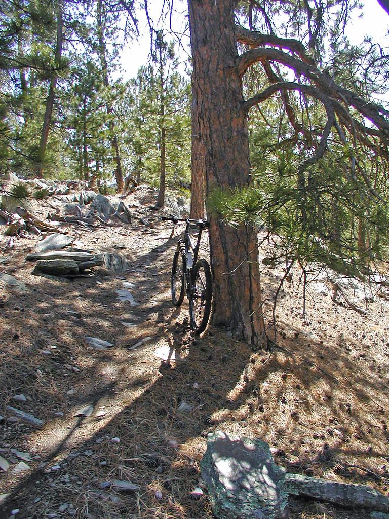 Black Hills singletrack....