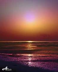 Colorful (ZiZLoSs) Tags: sea sky canon eos colorful kuwait aziz 28200mm abdulaziz عبدالعزيز 450d zizloss المنيع 3aziz almanie photoziz