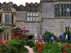 Roses and Delphiniums at Haddon Hall (UGArdener) Tags: pink blue red roses england green english unitedkingdom britain derbyshire july summertime haddonhall englishgardens delphiniums englishtravel
