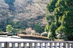 多摩御陵の光彩