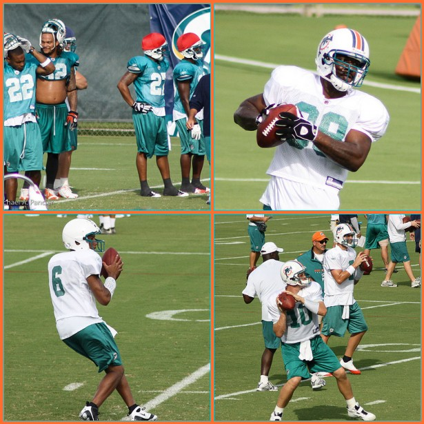 Dolphins Training Camp 2009