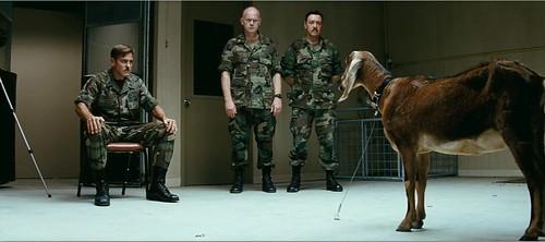 Los hombres que miran cabras