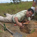 Ted Schultz, Smithsonian entomologist, excavates a leafcutter ant nest Guyana