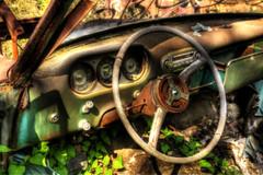 Take the wheel (SeeDiph) Tags: green broken graveyard car wheel rust detroit vine dashboard wreck hdr packard 313 streetlegal seediph