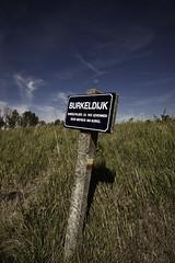 Burkeldijk (Veerle Pieters) Tags: belgium westvlaanderen westflanders polders knokkeheist brugseommeland burkelpolder burkeldijk