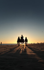 """He came looking for riders. Riders with a passion in their hearts for adventure, and, of course, danger. I sat mesmerized and told him I would go if I could bring my camera. """"No,"""" he said. (Don Giannatti (aka wizwow)) Tags: sunset horses beach mexico puertopenasco rockypoint alemdagqualityonlyclub"""